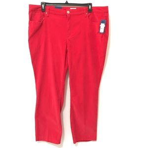 Womens Plus Size Red Jeans 24W 24 New Skinny Curvy